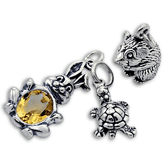 Sterling Silver Pet Charms