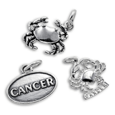 Sterling Silver Zodiac Charms