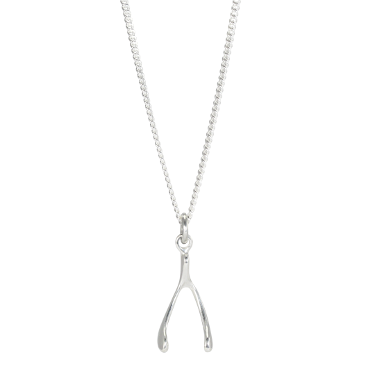 Sterling Silver Wishbone Charm Necklace